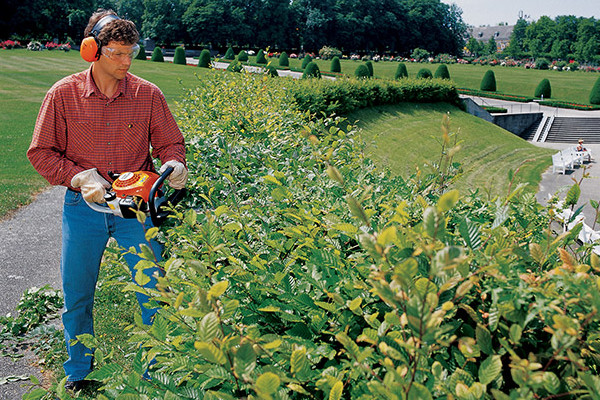 Stihl |  Hedge Trimmers | Homeowner Hedge Trimmers for sale at Powerland Equipment Inc.